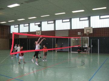 Vorbildlich: Der Willeball wird wie im Lehrbuch über das pinkfarbene Volleyballnetz gepritscht