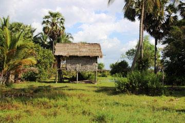 Maison cambodgienne sur pilotis (près de Siem Reap)