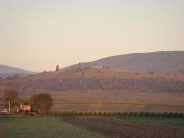 Hill 351