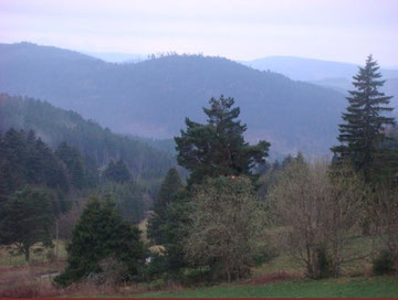 Vosges Country