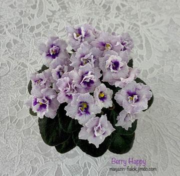 Berry Happy (B. Johnson)