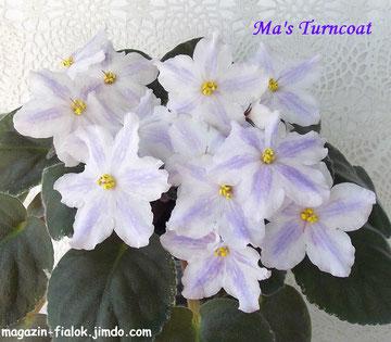 Ma's Turncoat (O. Robinson)