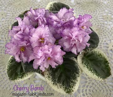 Cherry Bomb (Sorano)