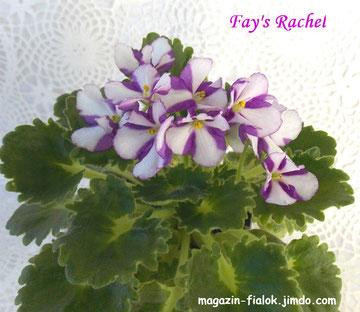 Fay's Rachel (F.Wagman)