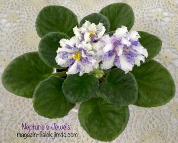 Neptune's Jewels (Greenhouses/Sorano)