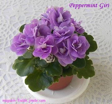 Peppermint Girl (H. Pittman)