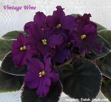 Vintage Wine (LLG)