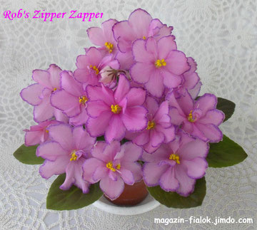 Rob's Zipper Zapper (R.Robinson)