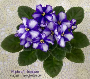 Neptune's Treasure (LLG/Sorano)