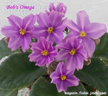 Bob's Omega (Anderson)