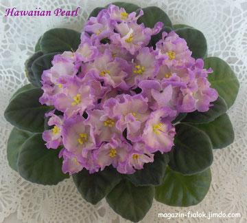Hawaiian Pearl (S. Sorano)