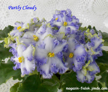 Partly Cloudy (G.Boone)