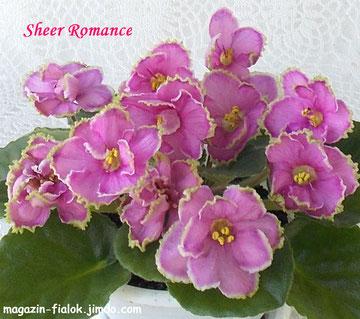 Sheer Romance (S. Sorano)