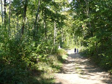 environnement nature et randonnées gîte rural Saint Quentin Aisne Laon Noyon Compiegne Peronne