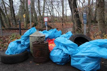 1,3 Kubikmeter Müll aus dem Elisenhain. Foto: Juliane Stöver