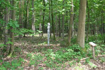 der Wanderer - Naturkultur Nieder-Roden 2012
