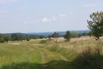 zwischen Langenalb und Pfaffenrot - Blick Richtung Mistwiesen