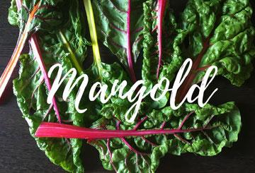 Mangold Saison Mai - Oktober
