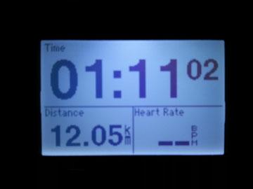 本日のRUN 12キロなり