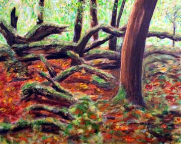 Waldlandschaft mit Baeumen, Laub und Moos