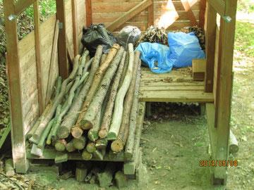 乾燥小屋に伐採した樹を集めました