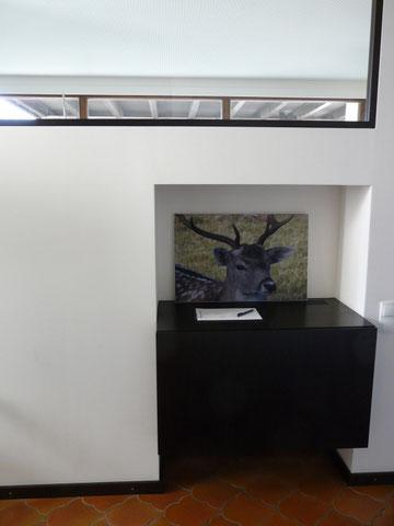 Hirsch im Eingangsbereich vom Gasthof Maria Grün/ A-Frastanz