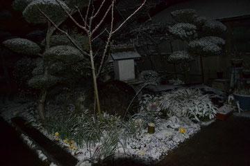 20130127 冬季雷とゲリラ積雪30分間