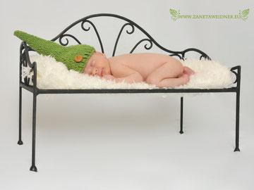 Newborn Fotograf Weiden