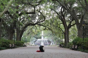 Foto Park in Savannah
