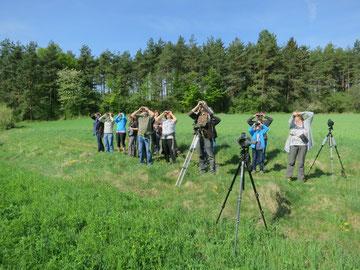 Vogelbeobachtung 2018. Foto: H. Schraml