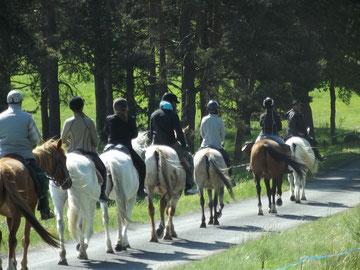 week-end à cheval, randonnée à cheval