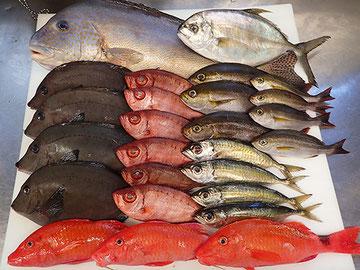 新鮮な魚を使った美味しいお寿司 出前