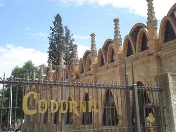 экскурсии из барселоны, монсеррат винные погреба, монастырь монтсеррат винные погреба