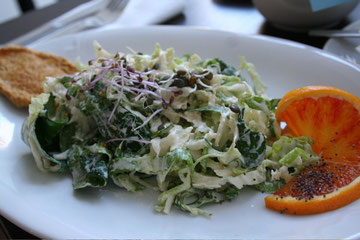 Farmer salad with Macadamia dressing and Carrot Flax Cracker