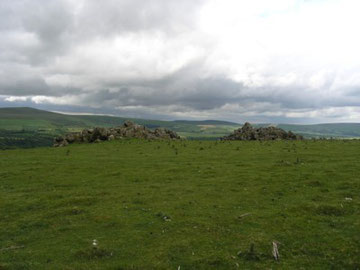 Carn Edward, Mynydd Carningli.