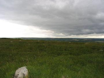 Hut Circles, Mynydd Carningli.