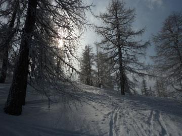 Schifahren 2012