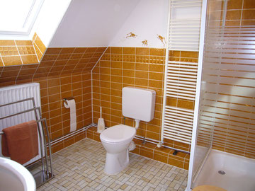 Dusche+WC,Handtuchtrockner,Platz für Handtücher, Fön