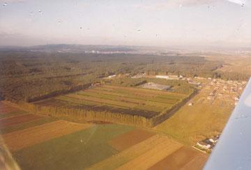 Das Baumschulgelände, umgeben von Pappelreihen und Hecken
