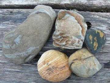 河原の石達