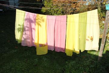 Teinture végétale jardin tinctoriale visite animation scolaires foulards en soie centre de loisirs biologique pédagogique tableaux textiles patchwork tissu développement durable potager biologique roses stages loire lyon forez montagnes du matin
