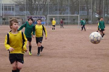 E1 beim heutigen 9:0 gegen die E1 von Spfr. Katernberg (Foto: mal).