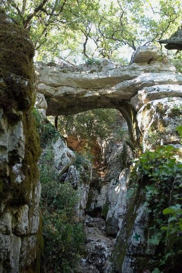 Le Bois de Païolive à proximité des Vans et du Chassezac est un jardin extraordinaire parcemé de sculptures façonnées par le temps.