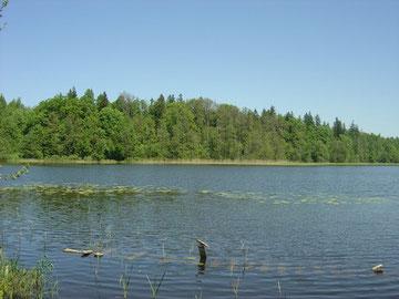 Revierinfo | Masuren | Masurische Seenplatte | Nord-Ost-Polen