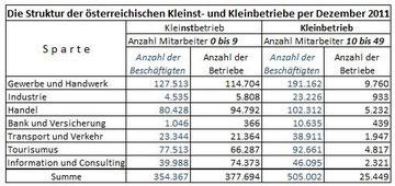 Struktur der österreichischen Kleinst- und Kleinbetriebe