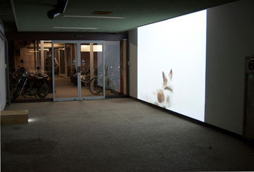 installationn view of 'breath' in Aichi University of the Art