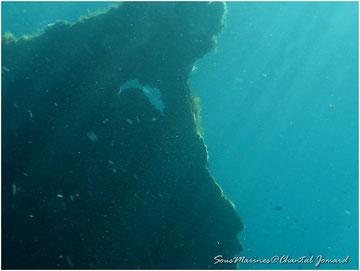 paysage sous marin,  port de l'ayguade, ile du levant, heliopolis