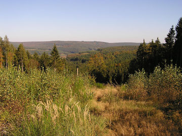 Spessart - Waldbaden