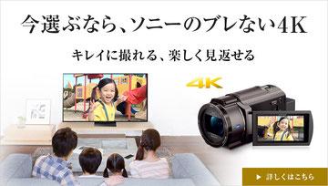 """ソニー デジタルHDビデオカメラレコーダー""""ハンディカム""""《フリーク》"""