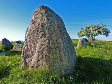 Megalithgrab bei Nobbin auf Wittow  mit sog. Wächtersteinen